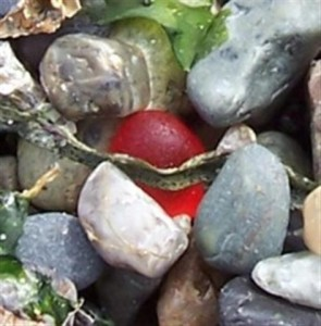 Red_round_sea_glass