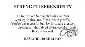 Serengeti Serendipity Card